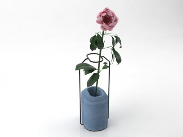 Weight Vases 8