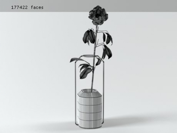 Weight Vases 24