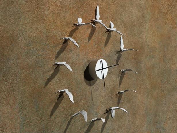 Swallow 3