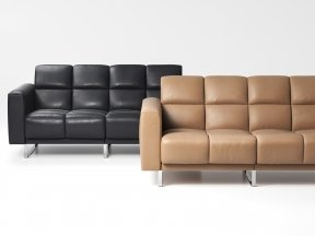 DS-580/02 2-Seater Sofa