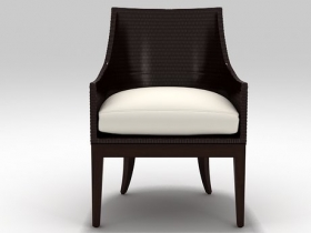 Umbria Dining Chair WS-110