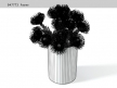 Pincushion Protea 10