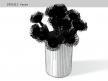 Pincushion Protea 9