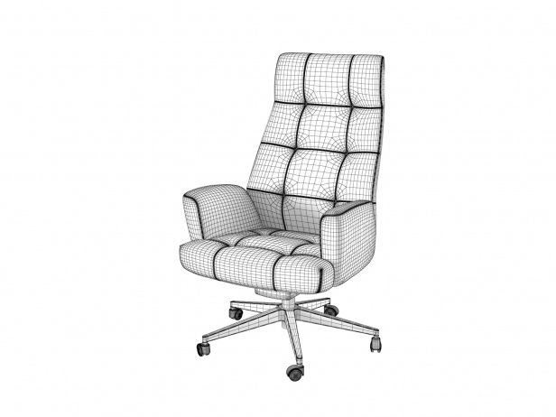 DS-257 Office Chair 5