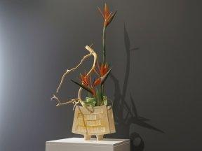 Strelitzia Ikebana