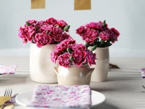 Pink Carnations in Ceramic Vases