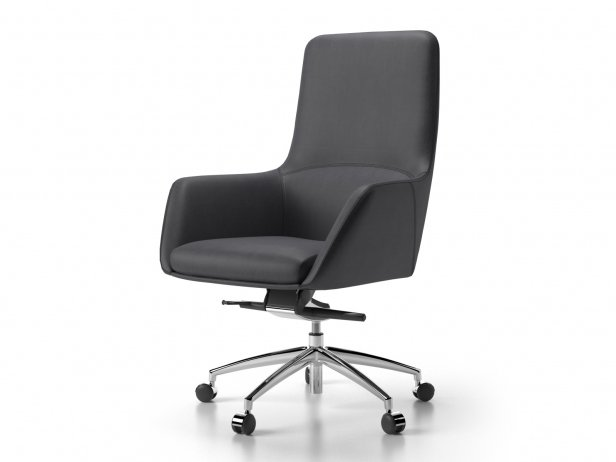 Darwin Swivel Medium 1