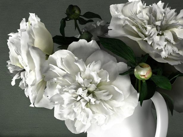 White Peonies 11