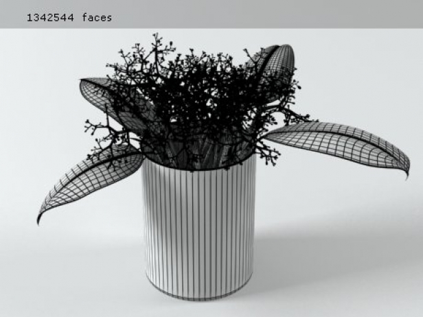Flowers 02 12