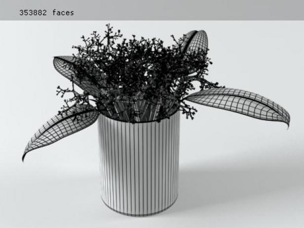 Flowers 02 13