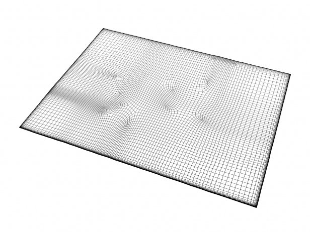 Nilanda NI12 Carpet 3