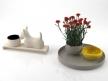 Carnations 01 4