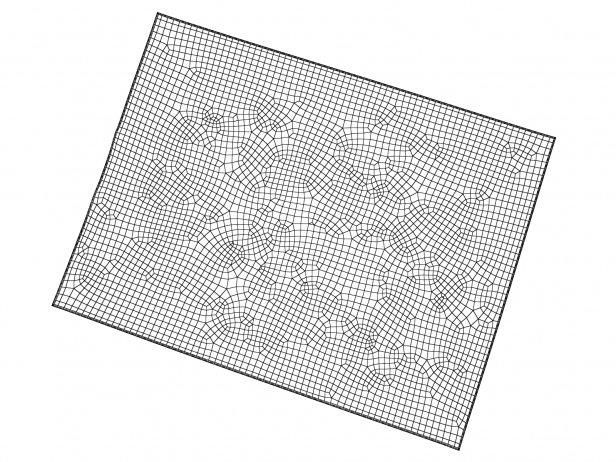 Nilanda NI32 Carpet 4