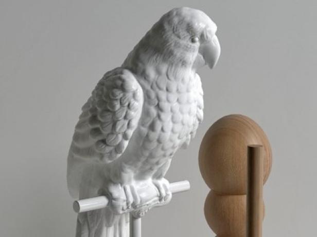 Parrot Set 3d Model Smallaccents