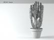 Euphorbia 5