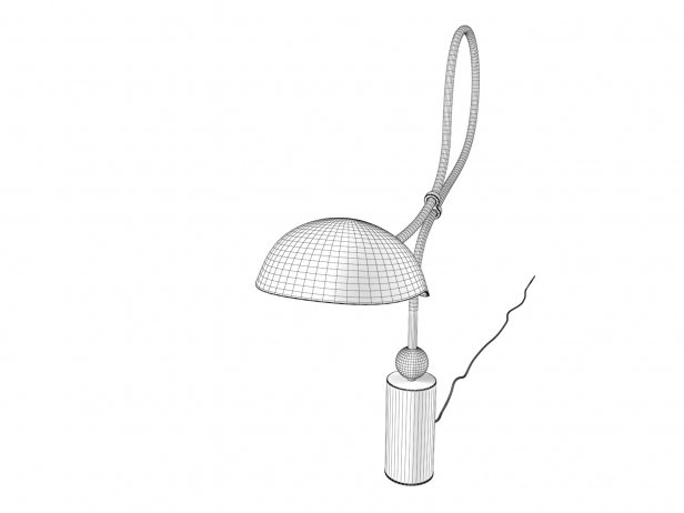 Curved Neck Table Lamp 4