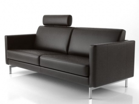 Leather Modular Sofa Family