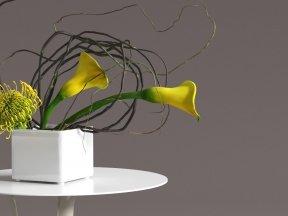 Calla Lily & Protea Ikebana