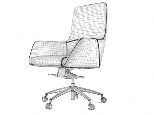 Darwin Swivel Medium 4