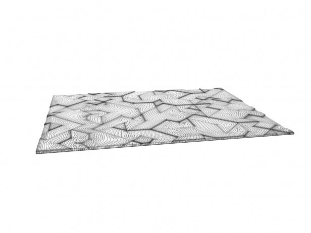 Asymetric Wool Rug 4