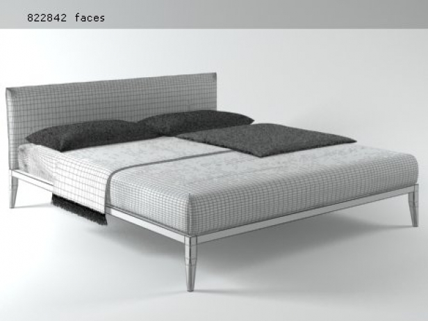 Life Bed 12