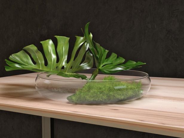 Philodendron Dianthus Vessel 3