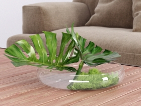 Philodendron Dianthus Vessel