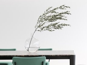 Glass Vase with Olive Branch