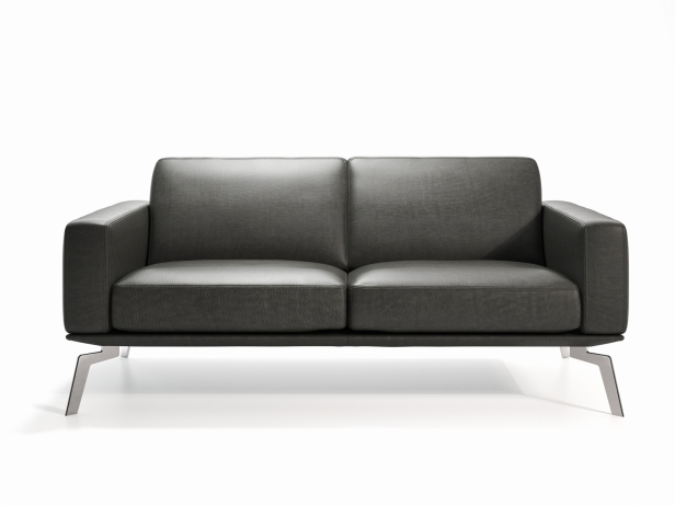 DS-87 2-Seater Sofa 2