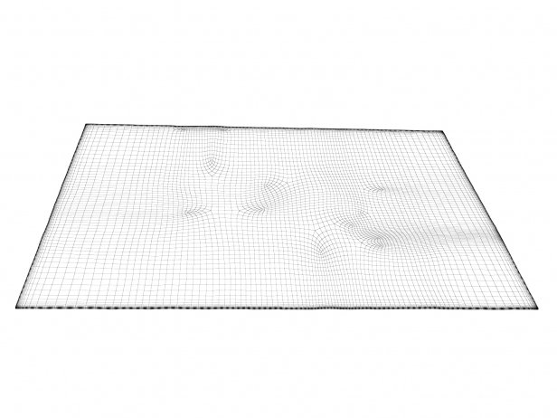 Nilanda NI21 Carpet 2
