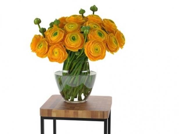Orange Ranunculus 6