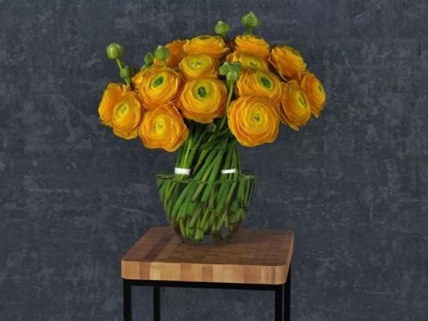 Orange Ranunculus 7