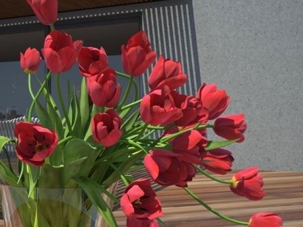 Tulips 01 12
