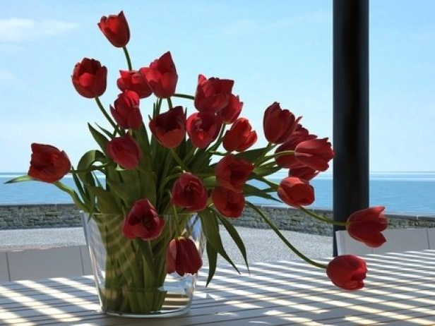 Tulips 01 10