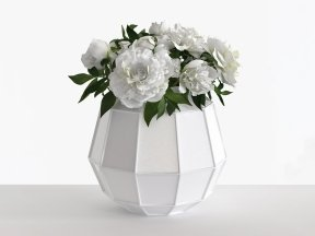 Faceted Vase of White Peonies