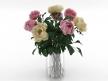 Flowers 03 1