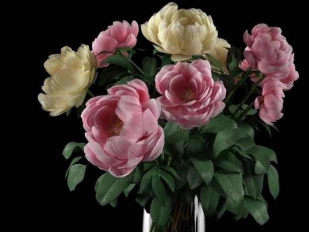 Flowers 03 12