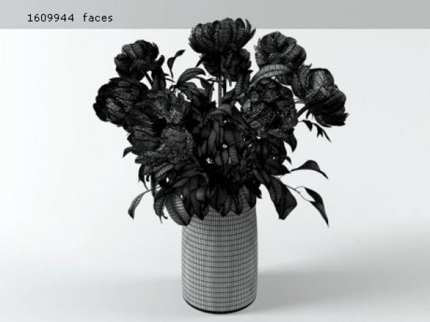 Flowers 03 13