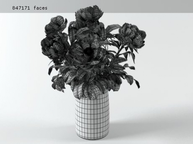 Flowers 03 14