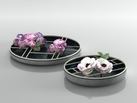 Ranunculus Ikebana