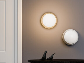 Liila 1-L Wall and Ceiling Light