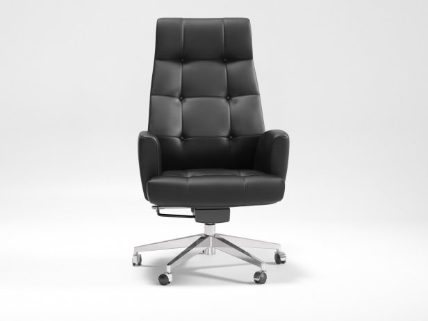 DS-257 Office Chair 2