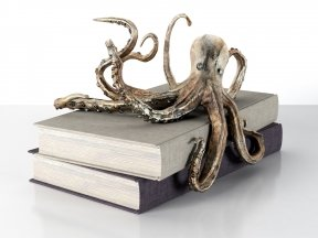 Octopus Shelf Decor